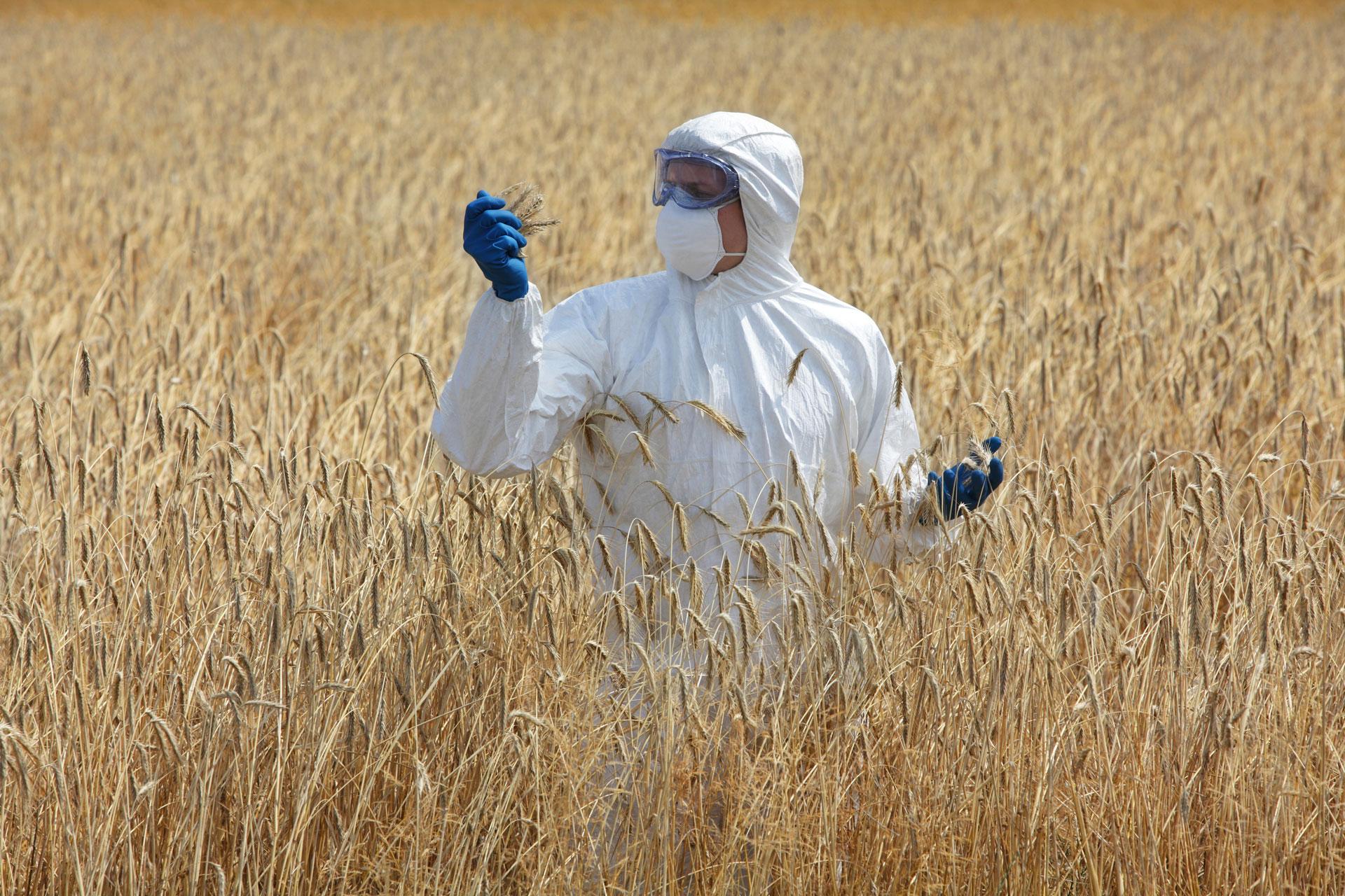 studio river consulenza in materia sicurezza ambientale igiene alimentare